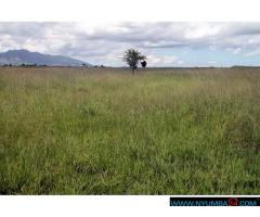 LAND FOR SALE IN CHILEKA