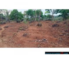 PLOT FOR SALE IN LIKHUBULA IN MULANJE