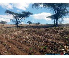 FARMLAND FOR SALE IN BVUMBWE R5
