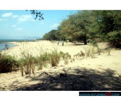 BEACH PLOT FOR SALE ALONG LAKE MALAWI IN MANGOCHI