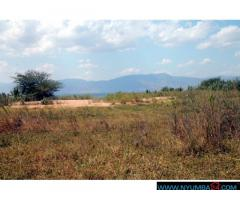 BEACH PLOT AT NAMIYASI ALONG LAKE MALAWI FOR SALE