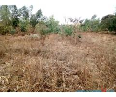 PLOT FOR SALE IN CHILEKA