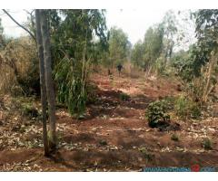 PLOT FOR SALE IN MPEMBA ALONG CHIKWAWA ROAD