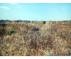 LAND FOR SALE IN LIRANGWE