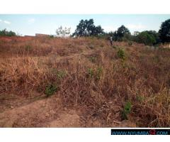 PLOT FOR SALE IN NYAMBADWE-MAGALASI