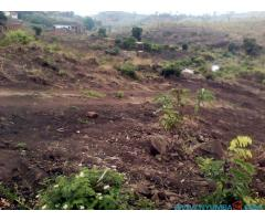 PLOT FOR SALE IN NAMIWAWA NSONKHO AREA