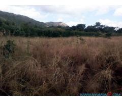 COMMERCIAL LAND FOR SALE IN MAPANGA ALONG ZOMBA ROAD