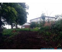 LAND FOR SALE IN BLANTYRE/BANGWE