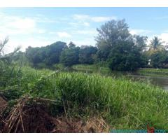 LAND FOR SALE ALONG SHIRE RIVER AT ZALEWA