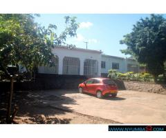 HOUSE FOR RENT IN BLANTYRE