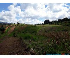 PLOT FOR SALE IN SUNNYSIDE