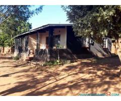 4 HOUSES FOR SALE IN MWANZA ON ONE PLOT