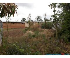 COMMERCIAL PROPERTY FOR SALE IN MAPANGA