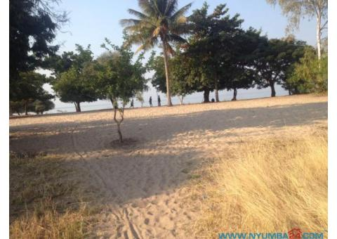 Beach Front Plot in Monkey Bay