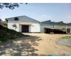Warehouses available for rent in Makata