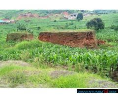 Plot for sale in Mpingwe