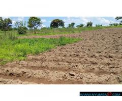 Land for sale in Mpemba