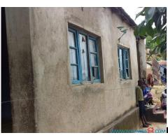 Two semidetached houses for sale in Mbayani