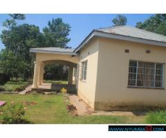 Four bedroom house for rent in Chilomoni