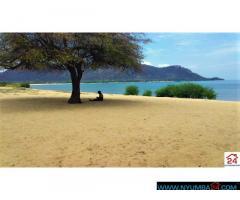Lakeshore plot for sale in Mangochi