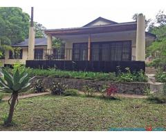 Furnished Three Bedroom House with Swimming Pool for Rent in Sunnyside