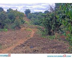 Land for sale in Chigumula